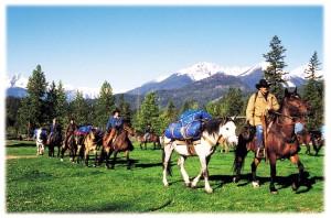 Job Seekers-riders-with-packhorses