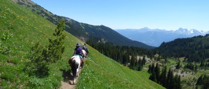 Horseback riding through the mountains and meadows
