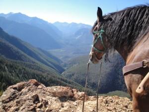 Horseback Guide (600 x 450)