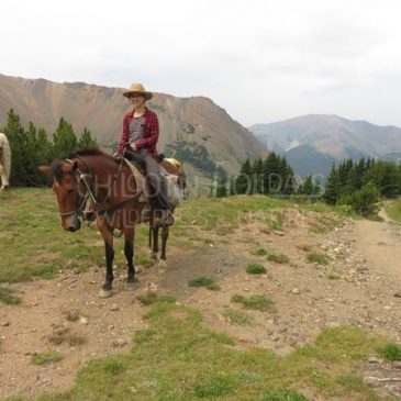 From scared to successful – my first horse experiences